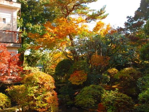 庭園_0328.jpg