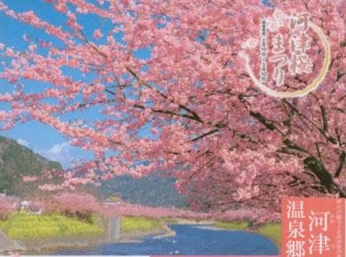 kawazu-tirasi-2.jpg