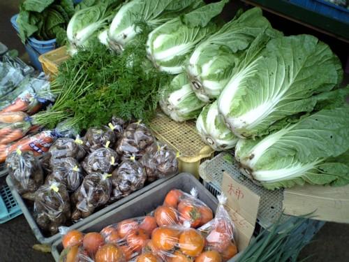 三島野菜-00002.jpg