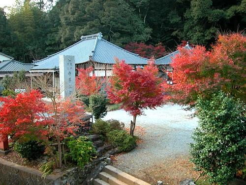 秋の善名寺-0034.jpg