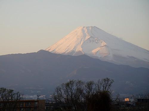 三島の富士山_0214.jpg