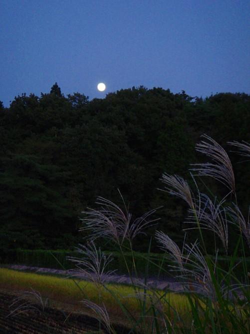 名月-001.jpg