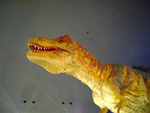 00129-恐竜博物館.jpg