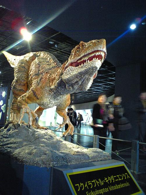 00136-恐竜博物館.jpg