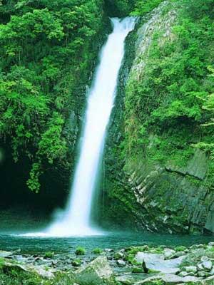 浄蓮の滝1 040.jpg