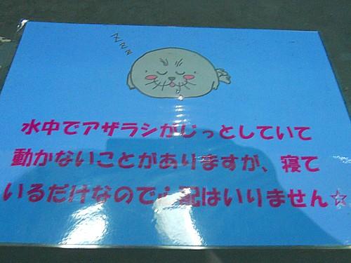 伊勢鳥羽-3318-1.jpg