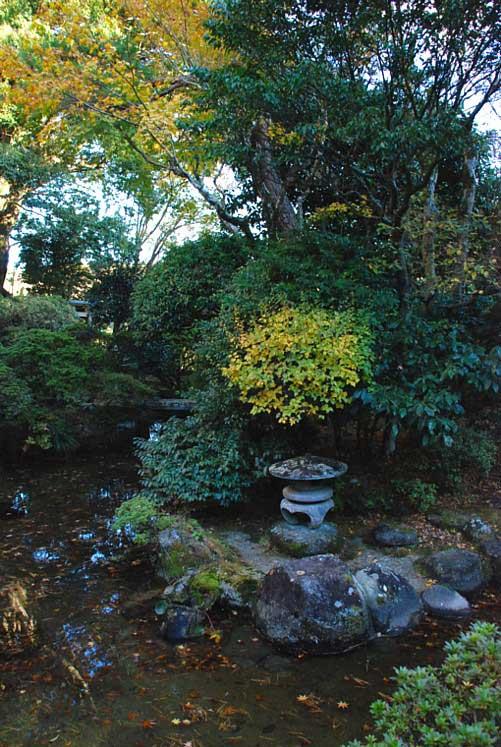 日本庭園・秋_0336-1.jpg