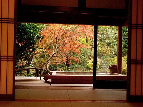 秋・楓の間_0490.jpg