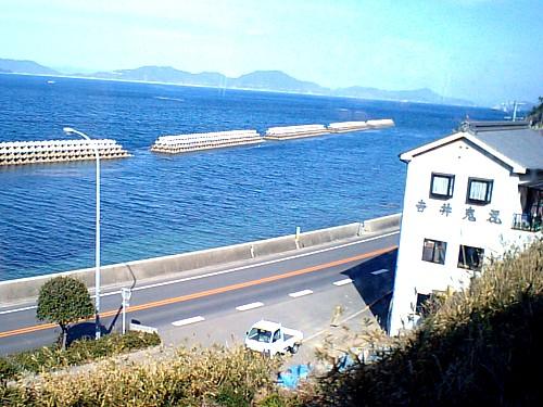 四国・鬼瓦-340075.jpg