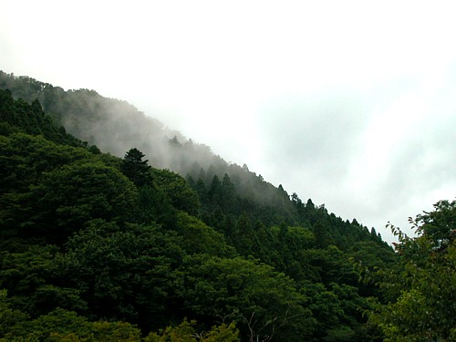 吉奈・初夏の霧-3636.jpg