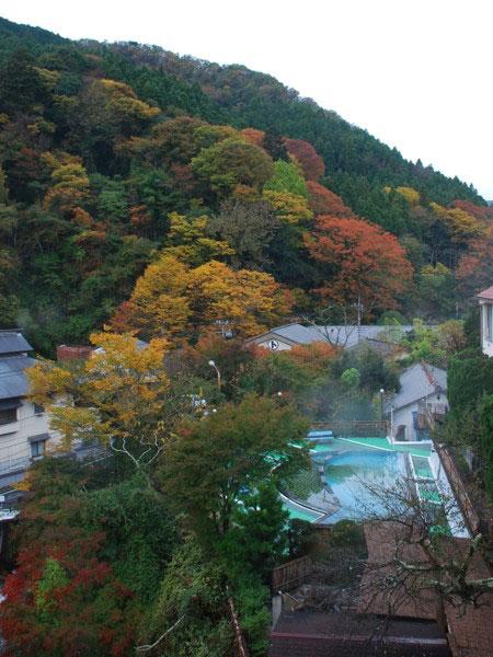 aki-kouyou-0021.jpg