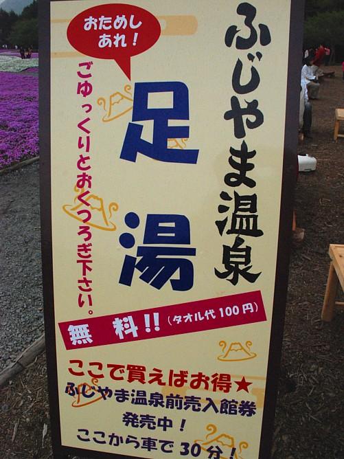 芝桜・看板_0133.jpg