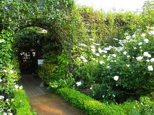 4382-ガーデン