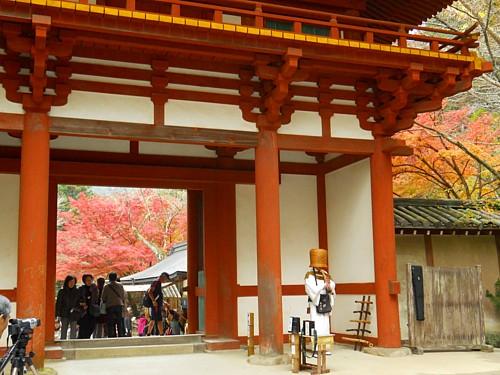 5471-室生寺