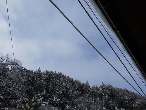 5868-雪