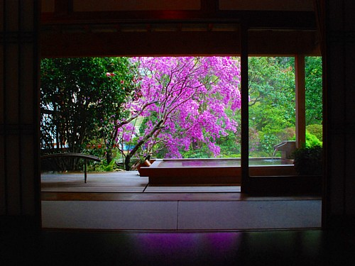 2058_広々露天付き特別室・春