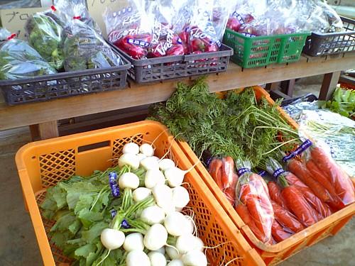 2319_三島野菜