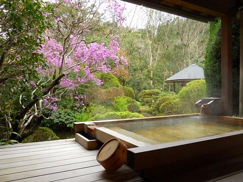 7696-春・庭園