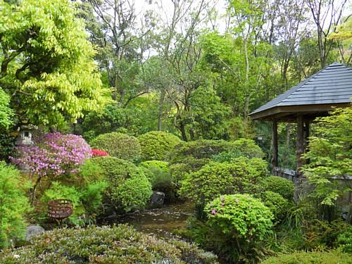 7767-庭園