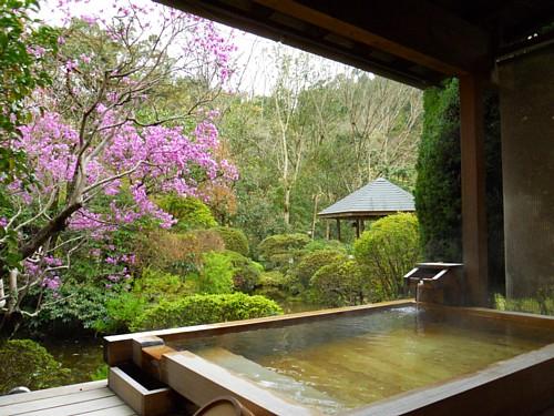 7712-春・庭園