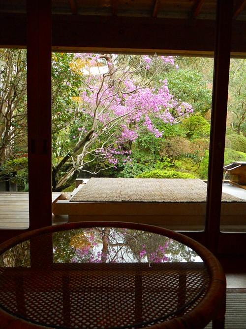 7722-春・庭園