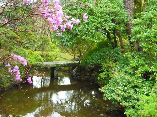 7657-日本庭園