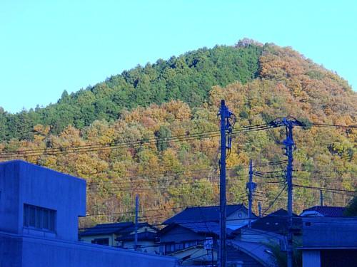 5560-湯ヶ島