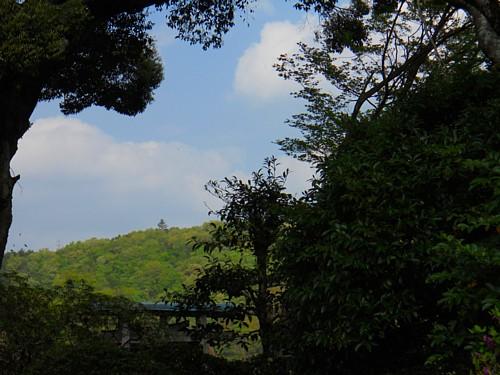 7759-庭園