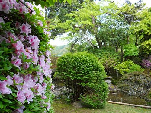 7755-庭園